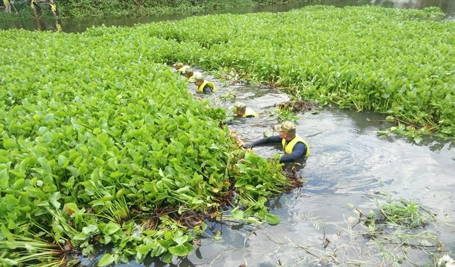 รัฐบาลเร่งแก้ปัญหาผักตบชวา ไม่ให้ขยายตัวเป็นอุปสรรคของปัญหาน้ำท่วมในฤดูฝนที่จะมาถึง